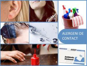 alergie intepaturi de insecte