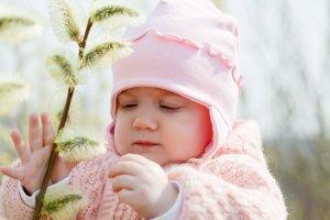 alergii la polen pomi timpurii