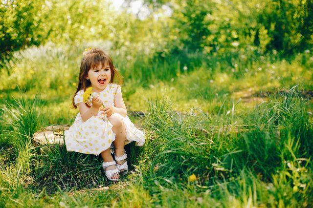 ambrozia rinita alergica
