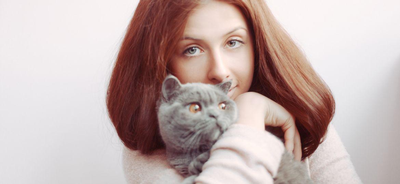 alergia-hrana_pisici